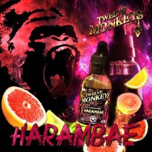 Twelve Monkeys - Harambae